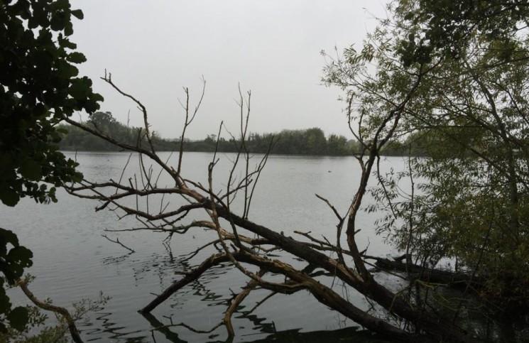 wędkowanie jesienią, łowienie ryb jesienią