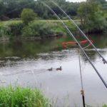 Łowienie ryb w sierpniu, wedkarstwo w sierpniu