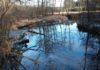 feeder na rzece wczesną wiosną