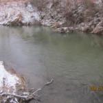 Szukanie drapieznika w rzece