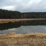łowienie ryb wiosną