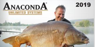 Katalog i nowości Anaconda 2019
