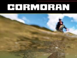 Katalog i nowości Cormoran 2019