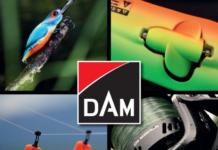 Katalog i nowości DAM 2019