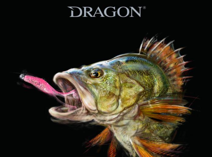 Katalog i nowości Dragon 2019