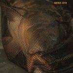 Katalog i nowości Prologic 2018