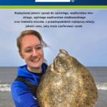 Katalog i nowości Zebco 2019