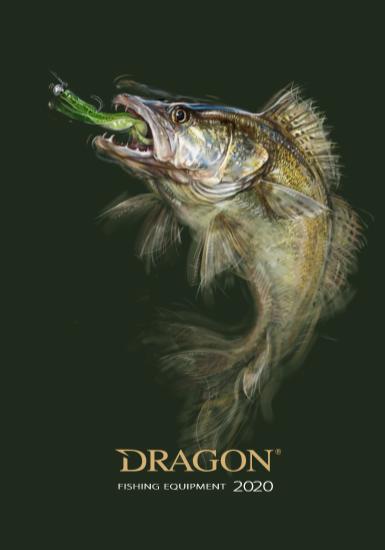 Katalog, nowości, oferta Dragon 2020