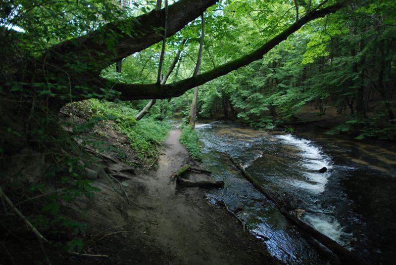 Rzeka Tanew wędkarstwo