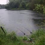 Wędkarstwo karpiowe dla początkujących