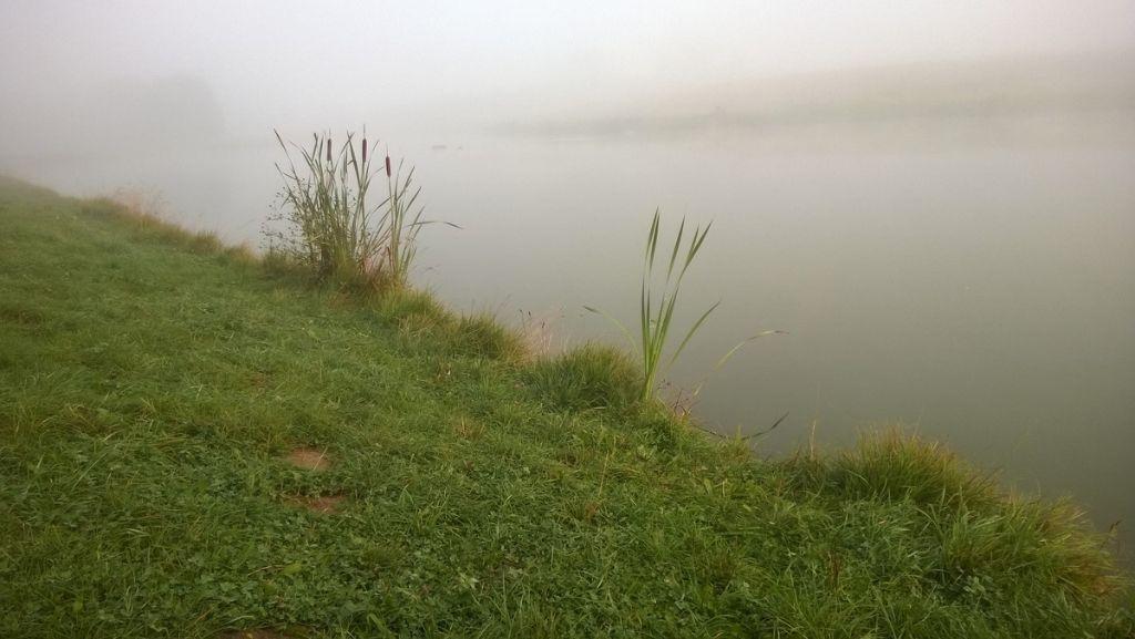 Wędkarstwo we mgle