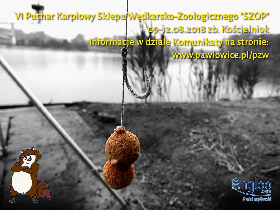 VI Puchar Karpiowy Sklepu Wędkarsko-Zoologicznego