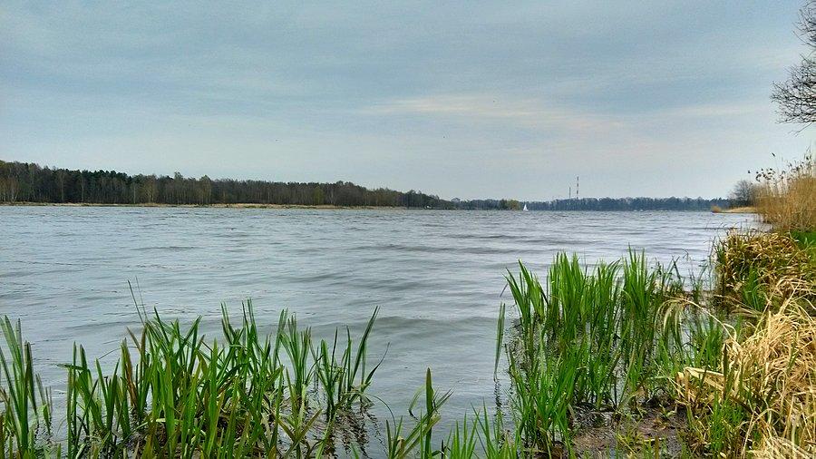 jezioro paprocańskie wędkarstwo, ryby