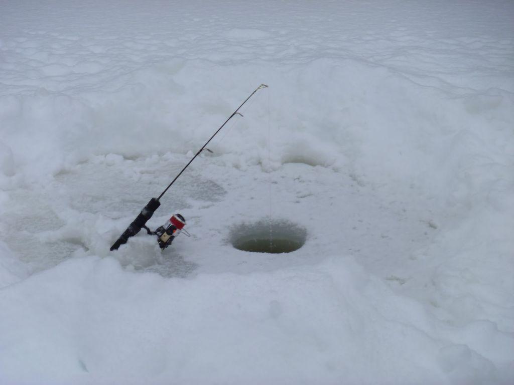 leszcze spod lodu
