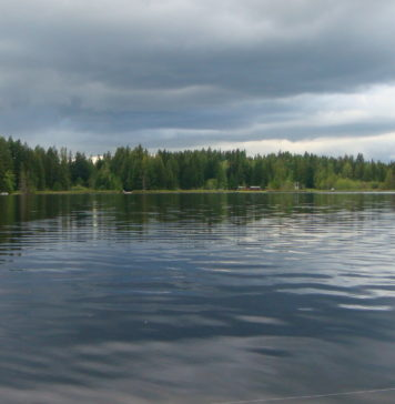 łowienie ryb w deszczu