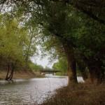 rzeka Bug Kryłów
