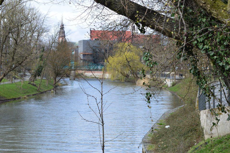 rzeka młynówka wędkarstwo i ryby