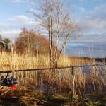 wędkarstwo jesienią i zimą